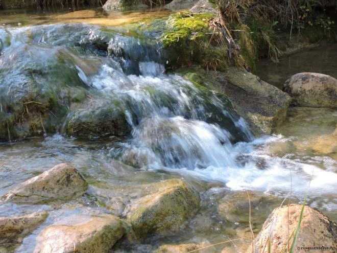 Los ríos conducen generalmente a poblados, síguelos.