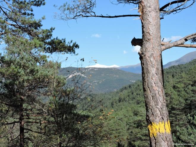 Vistas del Canigó nevado desde la Ruta dels 7 Gorgs.
